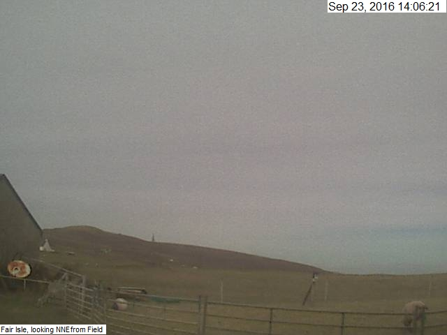 Fair Isle MetCam (Axis 207W) Looking SSW